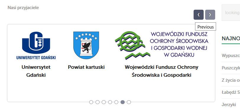 Prezentacja logo partnerów